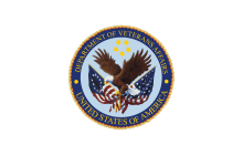 Using NoSQL and Enterprise Shared Services (ESS) to Achieve a More Efficient and Agile IT Environment at the VA