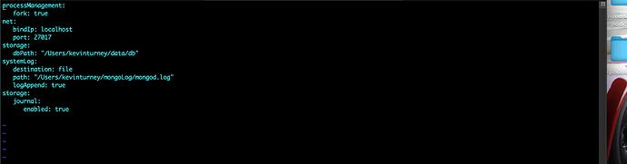 Screen Shot 2021-02-22 at 10.10.04 AM