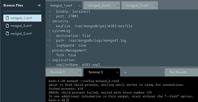 Screenshot_2021-04-19 Lab Deploy a Replica Set - MongoDB University(2)