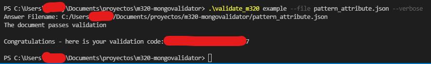 validator mongodb