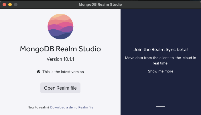 "Realm Studio opening view, with a button to ""Open Realm file"""